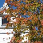 Fall Color on West Main St, Grass Valley