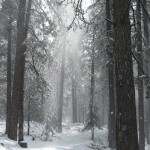 Hardrock trail in snow