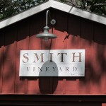 Sunshine at Smith Vineyard, late Sunday May 29th